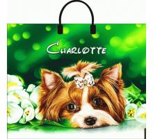 Сумка 38*35 Шарлотта